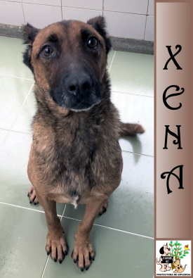 (Español) XENA
